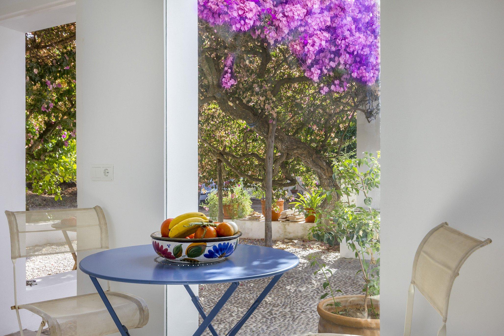 Casa Flor- Ibiza